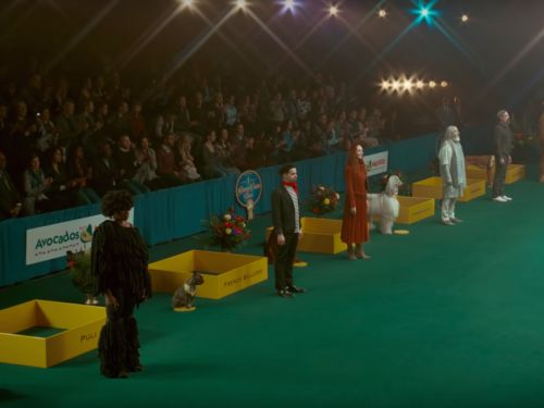 Humans Compete for Best in Show in 'Avocados From Mexico' Super Bowl Commercial