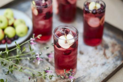 Apple Cranberry Moscow Mule