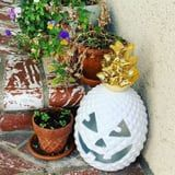 HomeGoods's Pineapple Jack-o'-Lanterns Are My Halloween Aesthetic, and I Need Them All