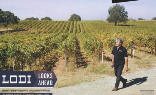 "The Wine Spectator gives credence to Lodi's ""rising tide"" of premium winegrowing"
