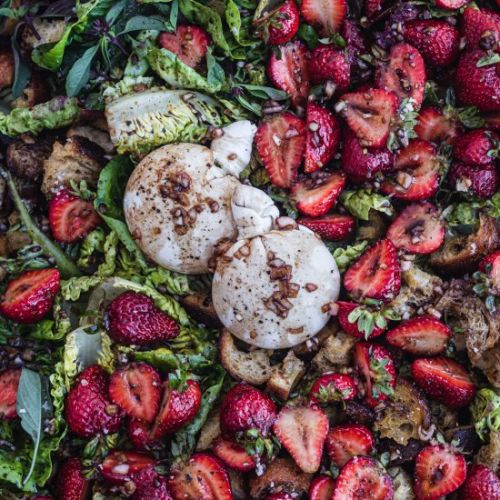 Strawberry Burrata Panzanella