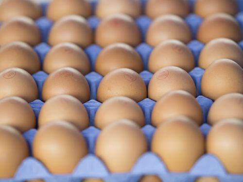 Cursed Food Hack Sends Woman to the Hospital for Egg Burn Treatment