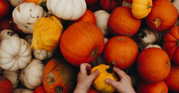 Why Pumpkin Beer Is the Worst