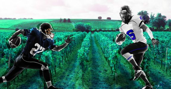 'We Try Not to Chase After Scores': NFL Alums Are Making Wine and Crushing It