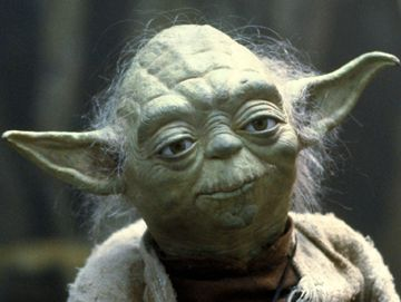"""Whiskey Yoda Says, """"There Is No Best, Only You Like Best"""""""