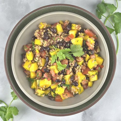 Mango Tomato Black Bean Salad
