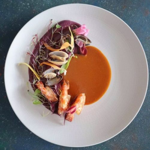 Seafood Stew & Purple Carrot Pure