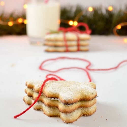 Coconut christmas cookies