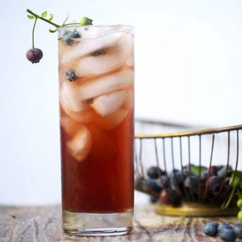 Spiked Blueberry Switchel Spritzer