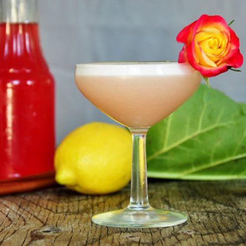 Limoncello and Rhubarb Cocktail