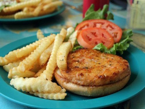 In Defense of the Salmon Burger