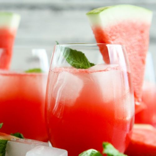 Watermelon Shrub Vodka Spritzer