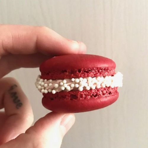 Cranberry spice french macarons