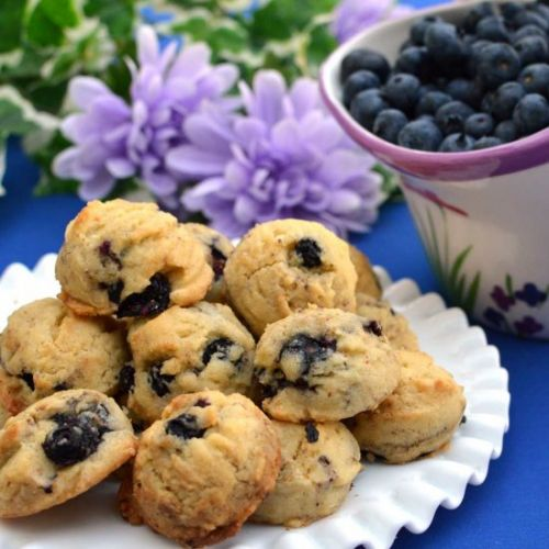 Blueberry Cookie Bites