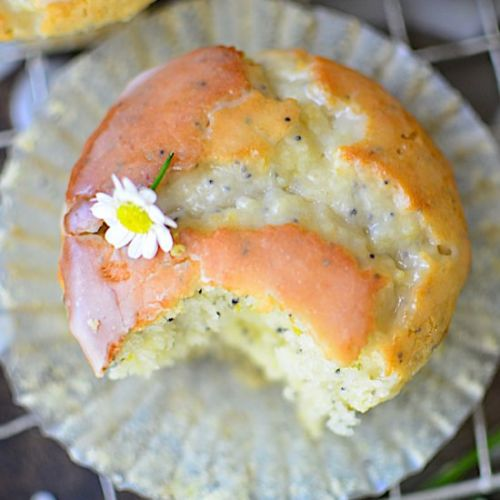 The Best Lemon Poppyseed Muffins
