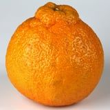 What the Heck Are Sumo Oranges, and Why Are They Everywhere Right Now?