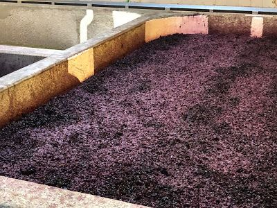 Rant: Two Portuguese Wineries, Two Opposing Guides